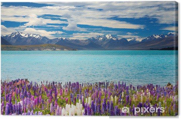 Lerretsbilde Lake Tekapo - New Zealand - Oseania