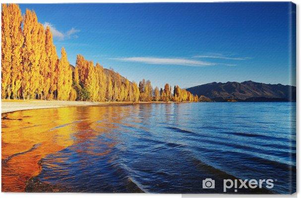 Lerretsbilde Lake Wanaka, New Zealand -