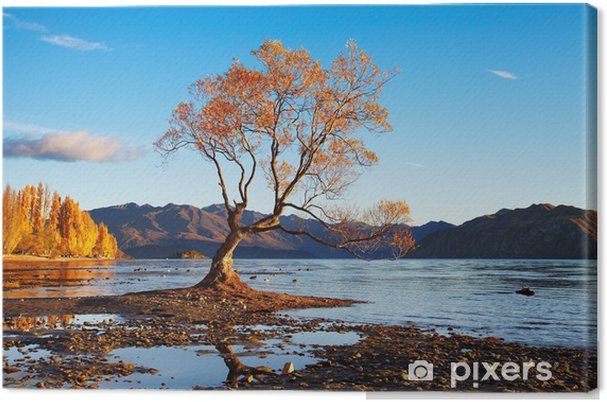 Lerretsbilde Lake Wanaka, New Zealand - Oseania