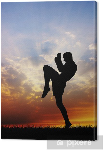 264377d4 Lerretsbilde Muay thai ved solnedgang • Pixers® - Vi lever for ...