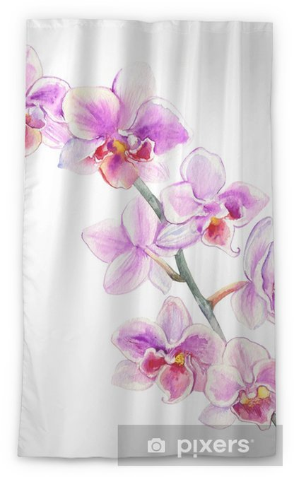 Lichtdurchlässiger Fenstervorhang Orchidee blüht die gezeichnete botanische Illustration des Aquarells Hand, die auf weißem Hintergrund für Designmuster, Paketkosmetik, Grußkarte, Hochzeitseinladung, Blumengeschäft, Drucken, Schönheitssalon lokalisiert wird - Pflanzen und Blumen