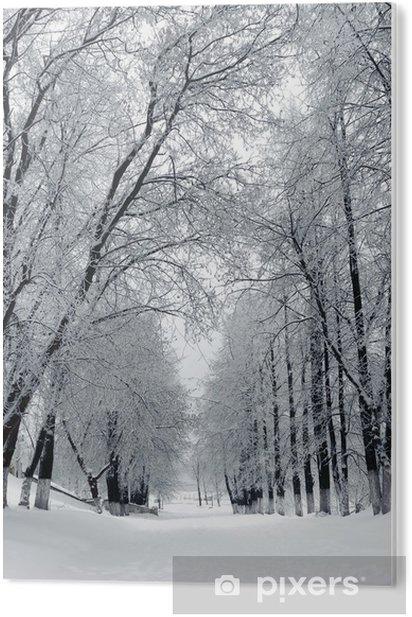 Obraz na PCV Winter Park, Krajobraz - Tematy