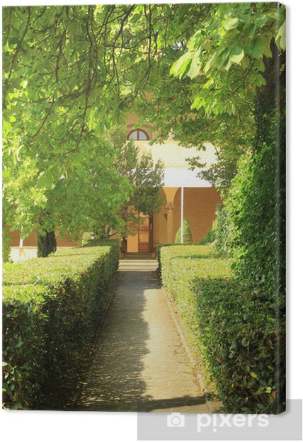 Obraz na plátně 木 漏 れ 日 の 小道 - Domov a zahrada