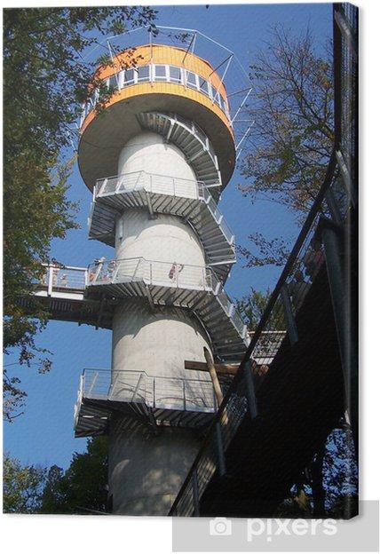 Obraz na plátně Baumkronenpfad im Hainich v Thüringen - Prázdniny