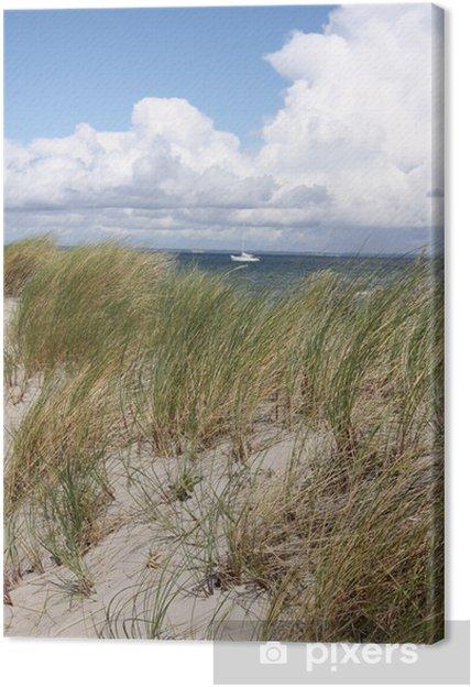 Obraz na plátně Dánsko Strand - Evropa