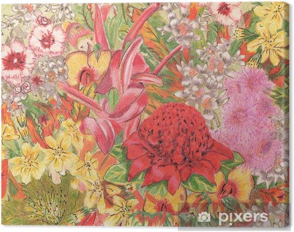 Obraz na plátně Divokých květin. Australští domorodci. Colorfu kresba tužkou. - Rostliny a květiny