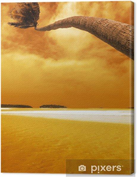 Obraz na plátně Dlaň ohýbání západ slunce - Voda