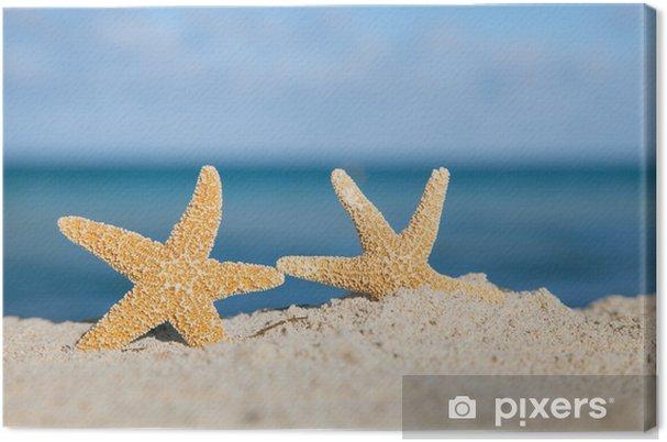 Obraz na plátně Dva sea star hvězdice na pláži, modré moře a písek, mělké - Prázdniny