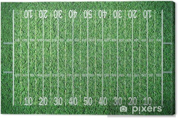 Obraz na plátně Fotbal louky - Struktury