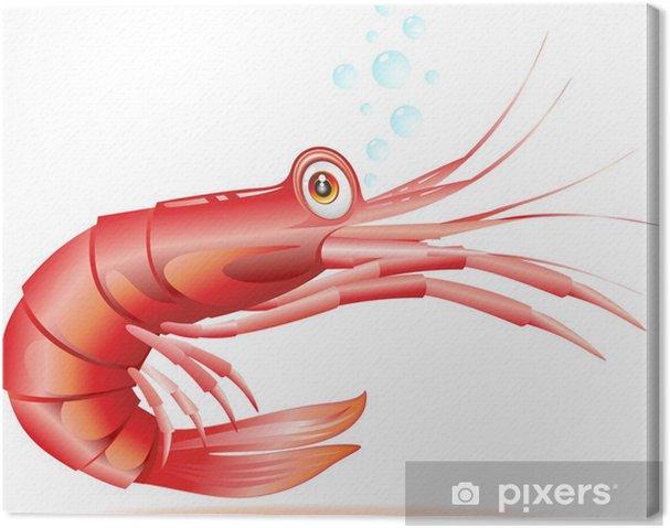 Obraz na plátně Gamberetto Gambero Cartoon-Krevety Raci Cartoon-Vector - Vodní a mořský život