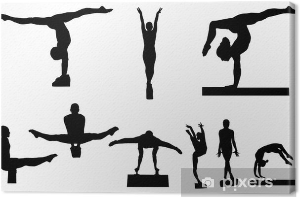 Obraz Na Platne Gymnastika Pixers Zijeme Pro Zmenu