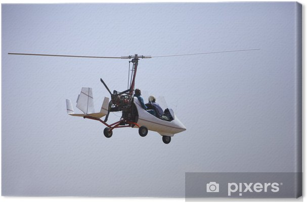 Obraz na plátně Gyrocopter - Vzduch