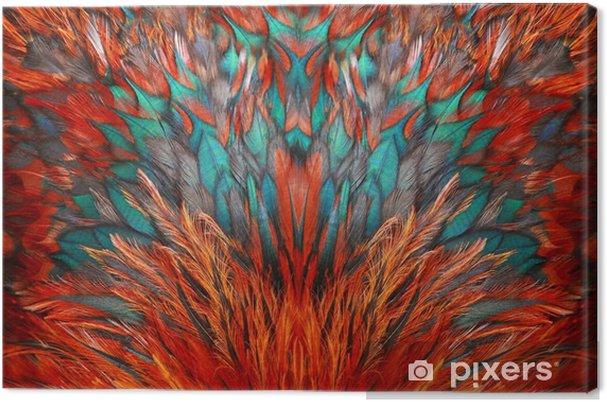 Obraz na plátně Jasný hnědý peří skupina nějakého ptáka - Grafika