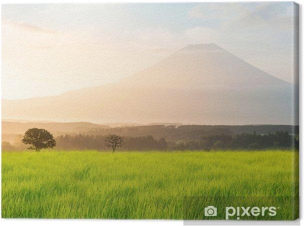 Obraz na plátně Mt.Fuji - Památky