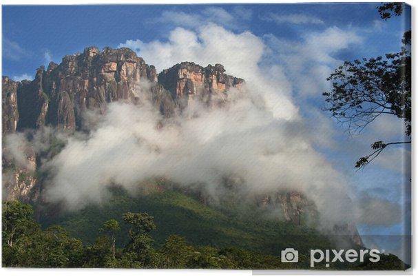 Obraz na plátně Národní park Canaima, Venezuela - Amerika