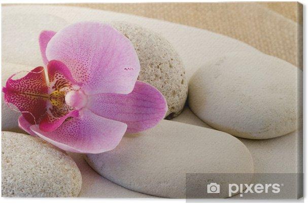 Obraz na plátně Orchidee mit Kieseln - Květiny