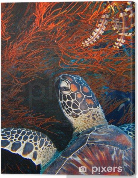 Obraz na plátně Pod vodou -