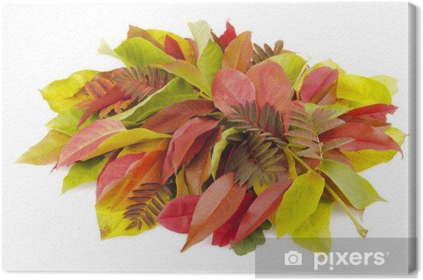 Obraz na plátně Podzimní pozadí - Roční období