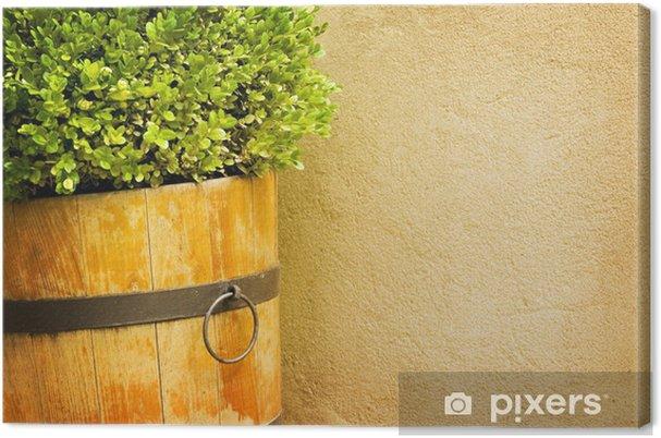 Obraz na plátně Rural zahrada backgroud - Domov a zahrada
