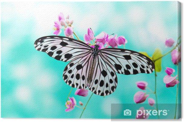 Obraz na plátně Rýžový papír motýl - Témata