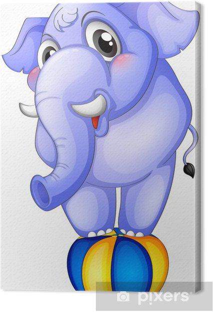 Obraz na plátně Slon nad skákací míč - Nálepka na stěny