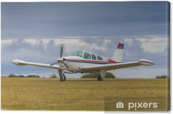 Obraz na plátně Soukromá jediný motor letadla - Témata
