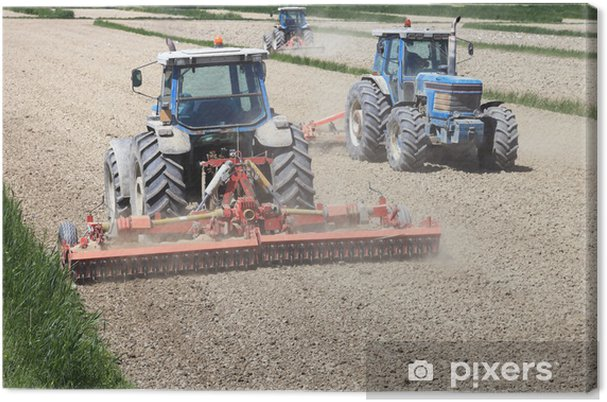 Obraz na plátně Traktory zemědělství - Zemědělství