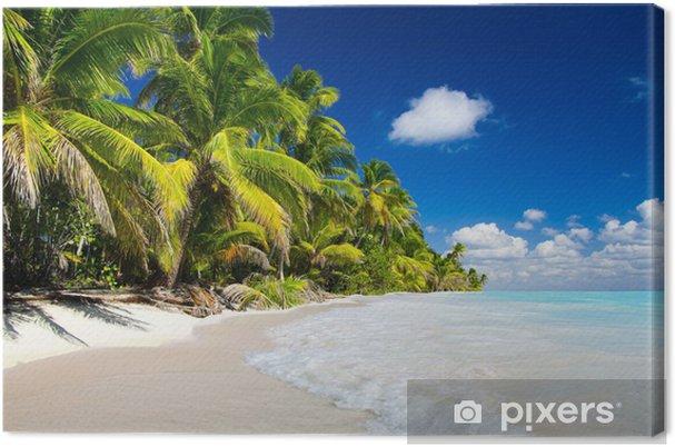 Obraz na plátně Tropické moře - Voda