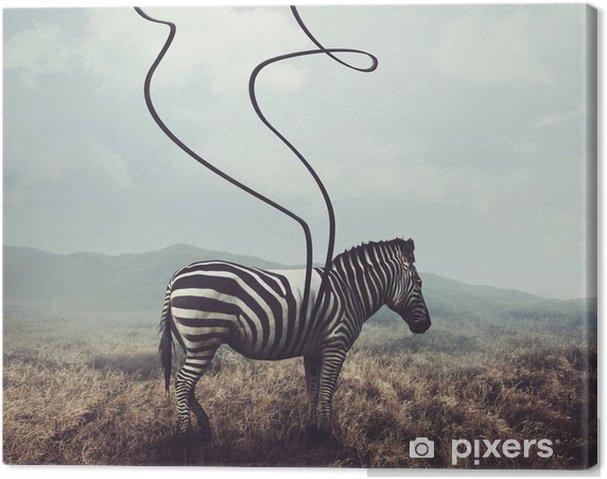 Obraz na plátně Zebra a pruhy - Zvířata