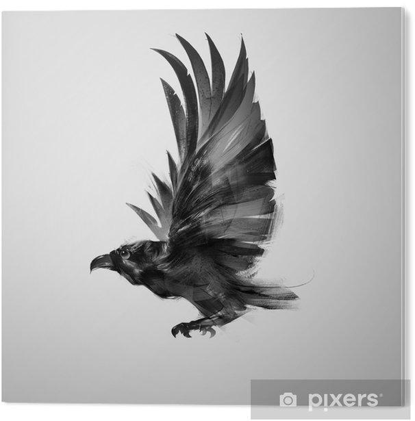 Obraz na Pleksi Izolowane graficznie latający ptak czarna wrona - Zwierzęta