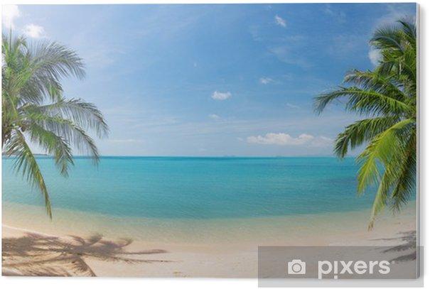 Obraz na Pleksi Panoramiczne tropikalnych plaża z palmy kokosowej - Palmy