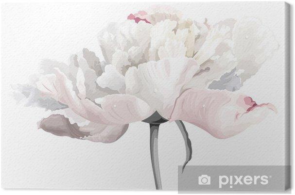 Obraz na płótnie 白い 牡丹 の 花 - Naklejki na ścianę