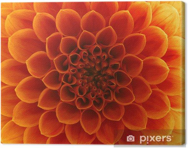 Obraz na płótnie Abstrakcyjne płatki - Kwiaty