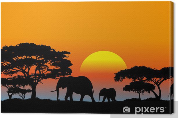 Obraz na płótnie Afrykańska sawanna - Tematy