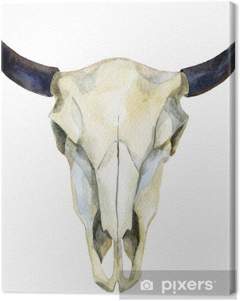 Obraz na płótnie Akwarela krowy czaszki - Zwierzęta