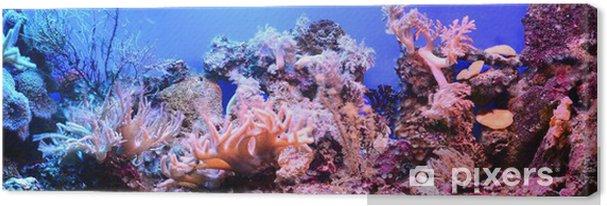 Obraz na płótnie Akwarium morskie na wystawie w zoo - Kwiaty