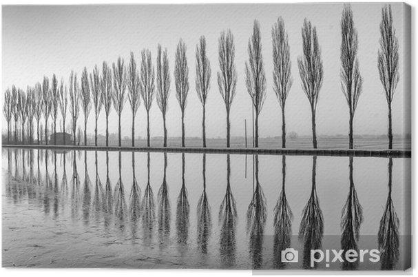 Obraz na płótnie Alberi riflessi sul lago all'alba bianco e nero w - Krajobrazy