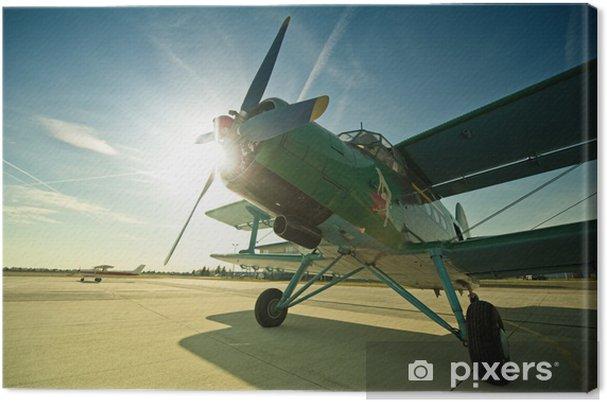 Obraz na płótnie Antonow AN2 - Transport powietrzny