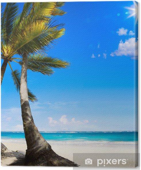 Obraz na płótnie Art Dziewicza Karaibów tropikalna plaża - Tematy