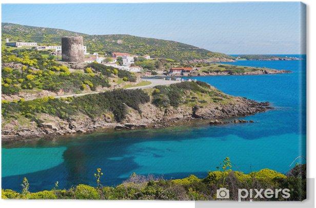 Obraz na płótnie Asinara wyspa Sardynia, Włochy - Woda