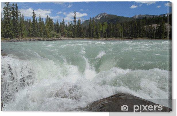 Obraz na płótnie Athabasca Falls - Ameryka