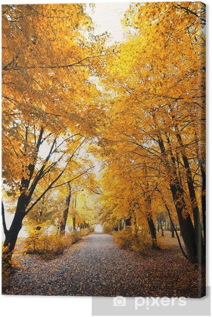 Obraz na płótnie Autumn park krajobrazowy - Krajobraz wiejski