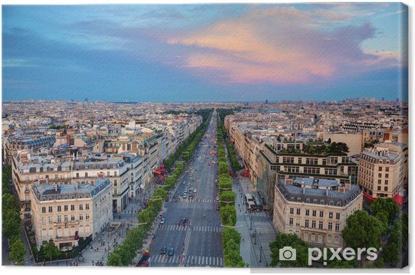Obraz na płótnie Avenue des Champs-Elysees w Paryżu, Francja - Miasta europejskie