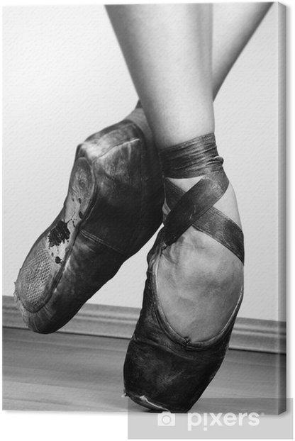 Obraz na płótnie Baletki - Tematy