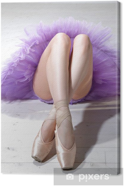 Obraz na płótnie Ballerina nogi - Tematy