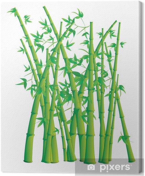 Obraz na płótnie Bambus -