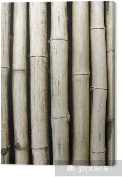 Obraz na płótnie Bambusa tle - Rolnictwo