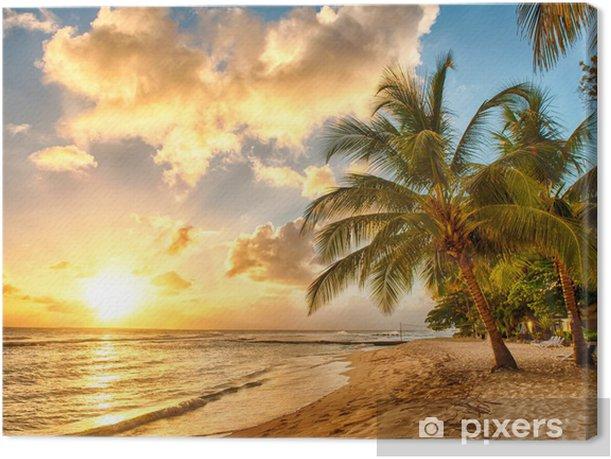Obraz na płótnie Barbados -