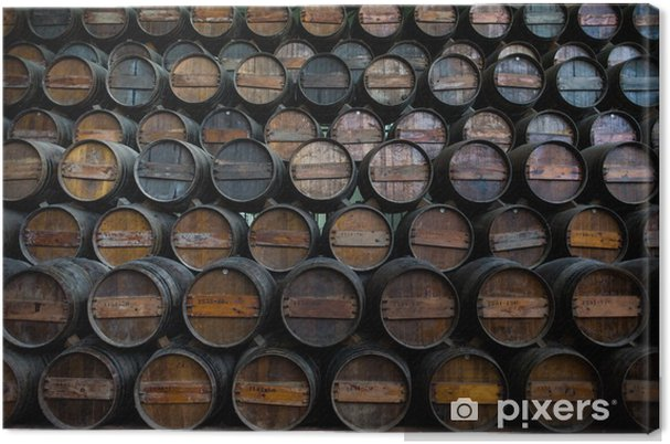 Obraz na płótnie Beczki wina ułożone w piwnicy Quinta da bacalhoa - Europa