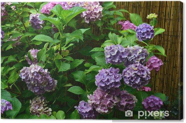 Obraz na płótnie Blautöne - Kwiaty